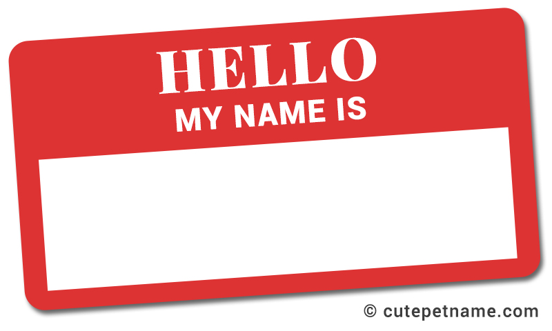 name tag Sticker for pets