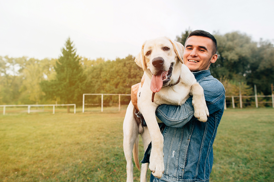 dog owner enjoys holding up his dog in the field